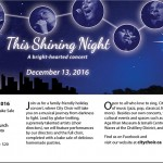shining-night-flyer